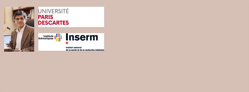 Séminaire mensuel IMRB du vendredi 3 novembre 2017