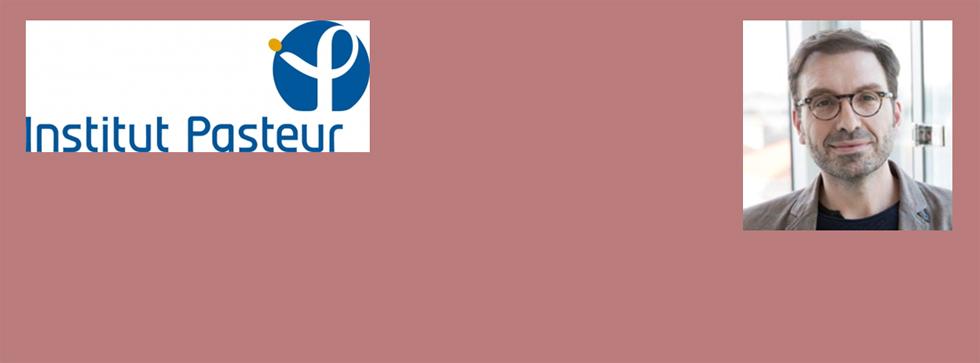 Séminaire mensuel IMRB du vendredi 1er juin 2018