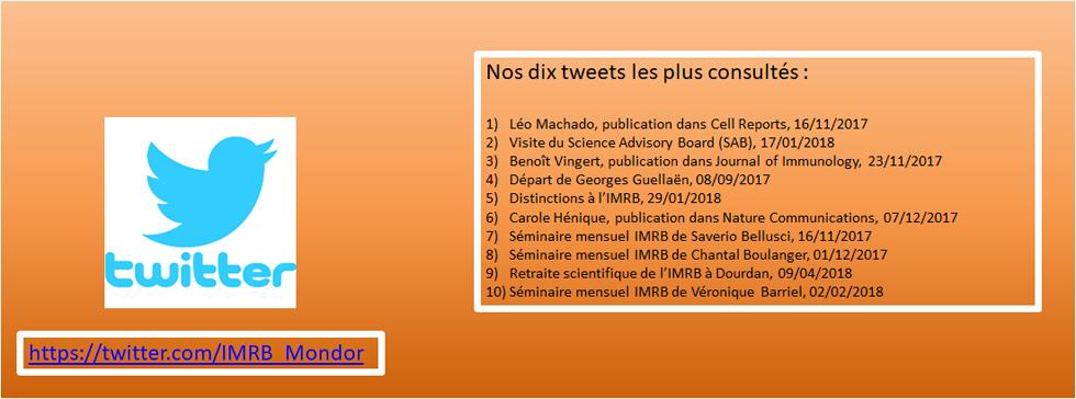 L'IMRB sur Twitter
