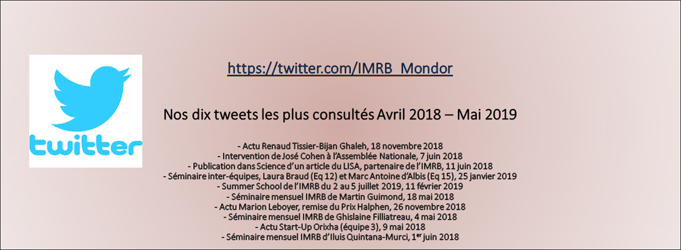 IMRB on Tweeter - May 2019